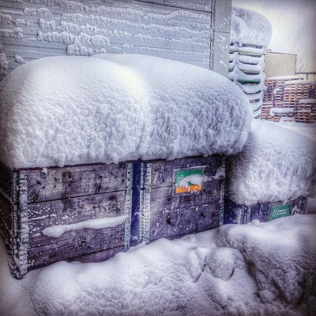 Det har snöat en del i Mellerud.