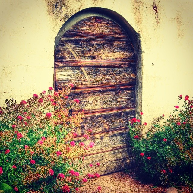 """Secret door"" #door #garden #lackoslott"