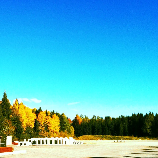 Fin höstdag!#fall #autumn #leaves #TagsForLikes #falltime #season #seasons #instafall #instagood #TFLers #instaautumn #photooftheday #leaf #foliage #colorful #orange #red #autumnweather #fallweather #nature