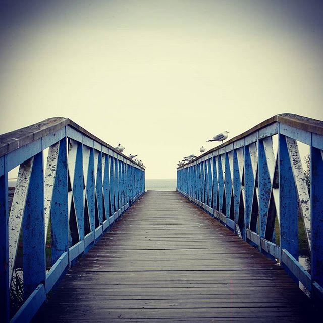 Bridge to open water. #summer #urban #vanersborgaren